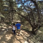 Sharing a moment in the shade of Cedars