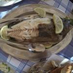 Yummy fish at the beach