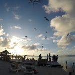 Iguana Reef Inn deck